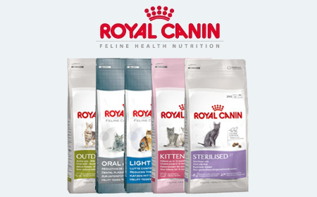 royal canin kattenvoer